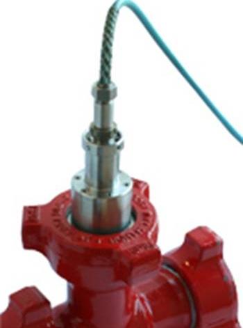 Hammer Union Pressure Transmitter